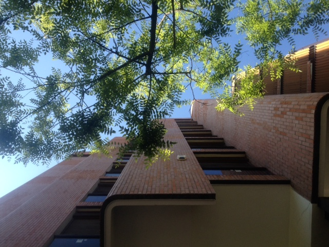 Looking up at Residential Girasol