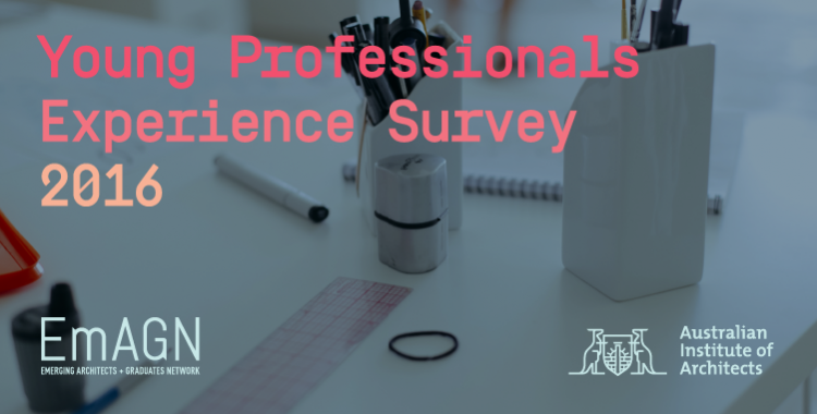 Young Professionals Experience Survey 2016