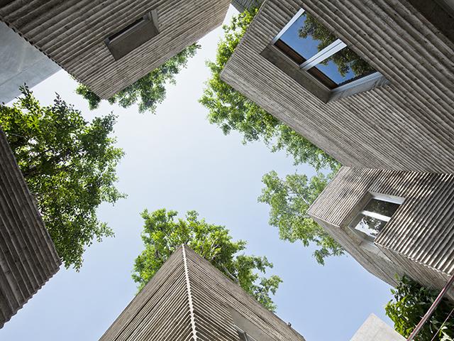 House for Trees - Photo Credit: Hiroyuki Oki
