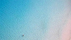 blue-shallows
